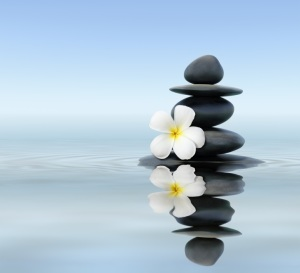 Zen stones with frangipani, Devon Mindfulness